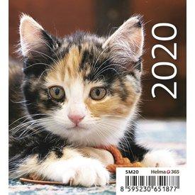 Helma Katzenbabys Tischkalender 2020
