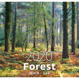 Helma Bos - Forest Kalender 2020