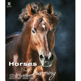 Helma Paarden - Horses Dreaming Kalender 2020