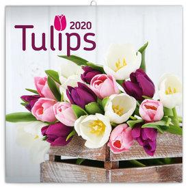 Presco Tulpen Kalender 2020