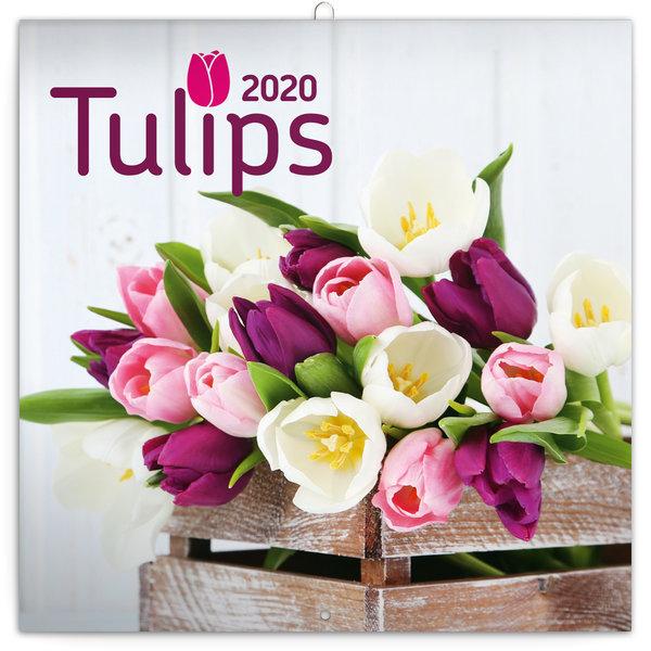 Presco Tulpen - Tulips Kalender 2020