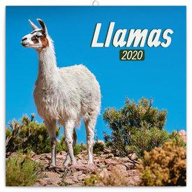 Presco Lama's Kalender 2020
