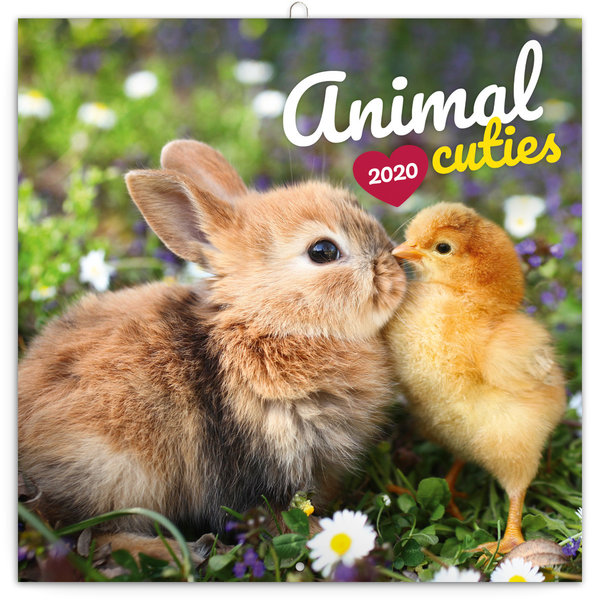 Presco Animal Cuties Kalender 2020