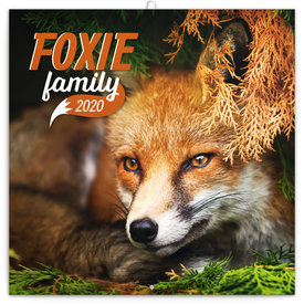 Presco Füchse - Foxie Family Kalender 2020