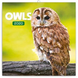 Presco Eulen - Owls Kalender 2020