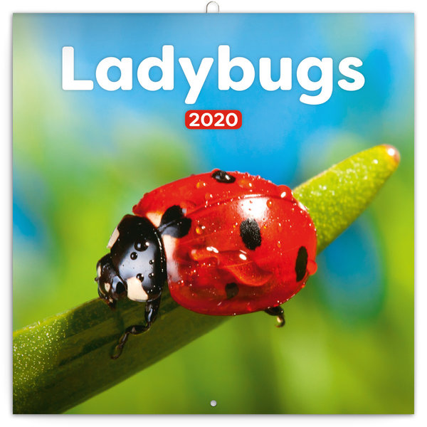 Presco Lieveheersbeestje - Ladybugs Kalender 2020
