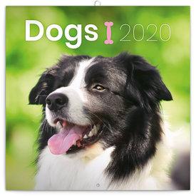 Presco Hunde - Dogs Kalender 2020