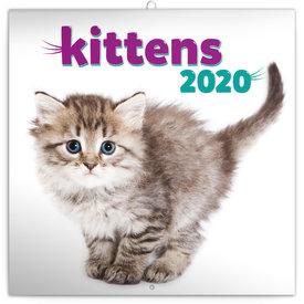Presco Kittens Kalender 2020
