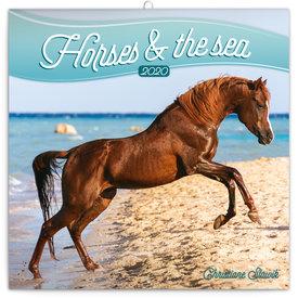 Presco Pferde - Horses & the Sea Kalender 2020