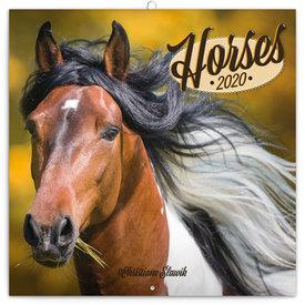 Presco Paarden - Horses Kalender 2020