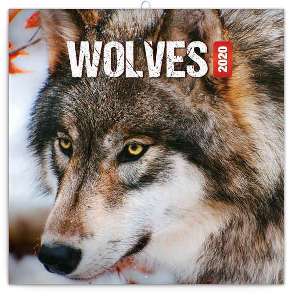 Presco Wölfe - Wolves Kalender 2020