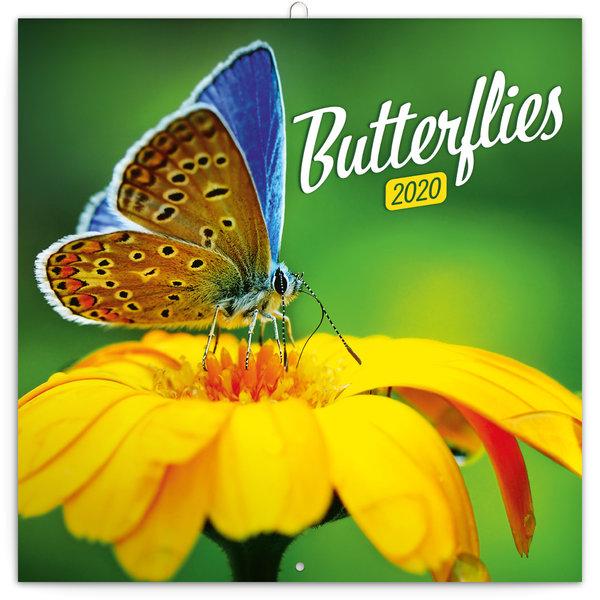 Presco Schmetterlinge - Butterflies Kalender 2020