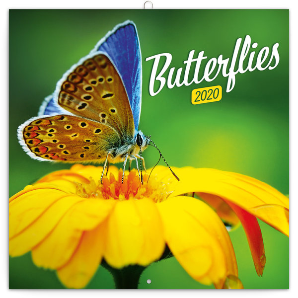 Presco Vlinders - Butterflies Kalender 2020