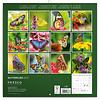 Vlinders - Butterflies Kalender 2020