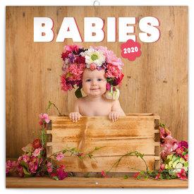 Presco Baby's - Babies Kalender 2020