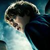 Harry Potter Kalender 2020