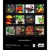 Gewürze und Kräuter 30x34 Kalender 2020