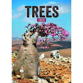 Presco Bäume - Trees 33x46 Kalender 2020