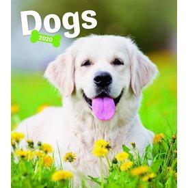 Presco Hunde - Dogs 30x34 Kalender 2020