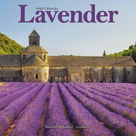 Avonside Lavendel Kalender 2020