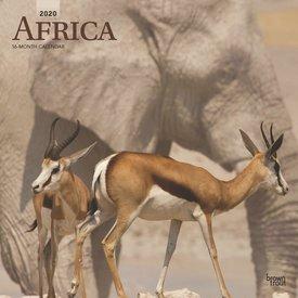 Browntrout Afrika Kalender 2020