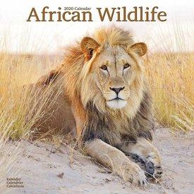 Avonside African Wildlife Kalender 2020