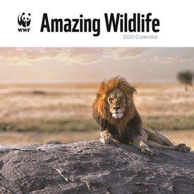 Carousel Amazing Wildlife Kalender 2020