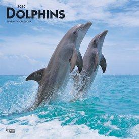 Browntrout Delfine Kalender 2020