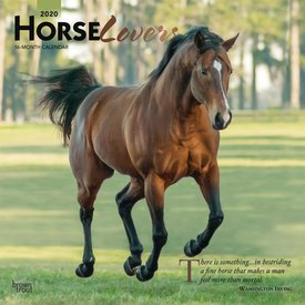 Browntrout Horse Lovers Kalender 2020