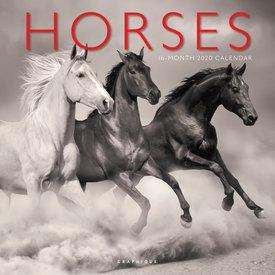 Graphique de France Paarden Kalender 2020