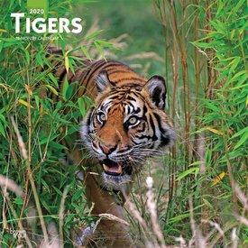 Browntrout Tiger Kalender 2020