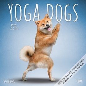 Browntrout Yoga Dogs Kalender 2020