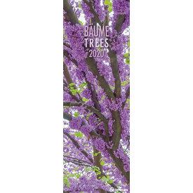 teNeues Bäume King Size Kalender 2020