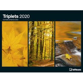 teNeues Laurent Pinsard Triplets 64x48 Posterkalender 2020