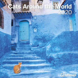 teNeues Cats Around The World Kalender 2020
