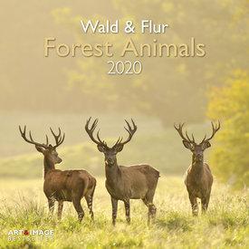 teNeues Wald & Flur Kalender 2020