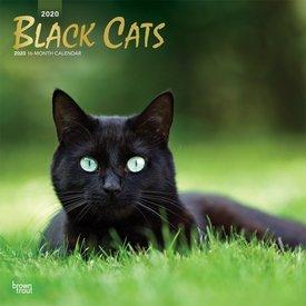 Browntrout Zwarte Katten Kalender 2020