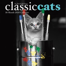 Graphique de France Classic Cats Kalender 2020