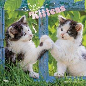 Browntrout I love Kittens - Ich liebe Kätzchen Kalender 2020