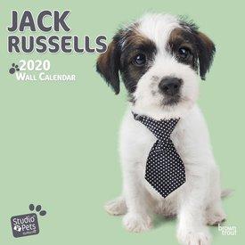 Studio Pets By Myrna Jack Russell Terrier Kalender 2020