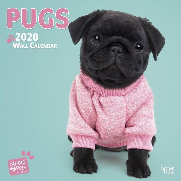 Studio Pets By Myrna Mops Studio Pets Kalender 2020