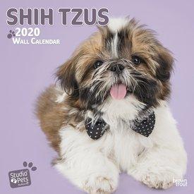 Studio Pets By Myrna Shih Tzu Kalender 2020