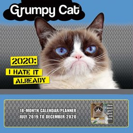 Sellers Publishing Grumpy Cat Familienplaner 2020