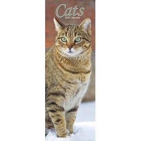 Avonside Katten - Cats Slimline Kalender 2020