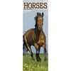 Pferde - Horses Slimline Kalender 2020