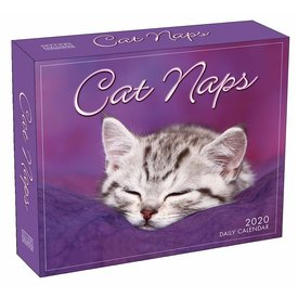 Sellers Publishing Cat Naps Page-A-Day Kalender 2020