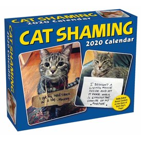 Andrews McMeel Cat Shaming Day-to-Day Boxed Kalender 2020