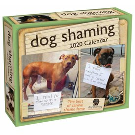 Andrews McMeel Dog Shaming Day-to-Day Boxed Scheurkalender 2020