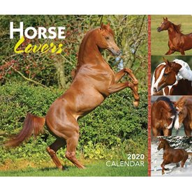 Browntrout Horse Lovers Page-A-Day Kalender 2020