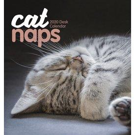 Carousel Cat Naps Tischkalender 2020